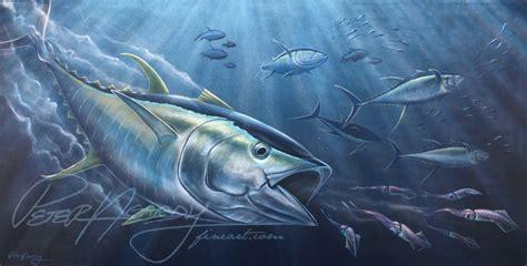 yellowfin boat drawing new yellowfin tuna painting