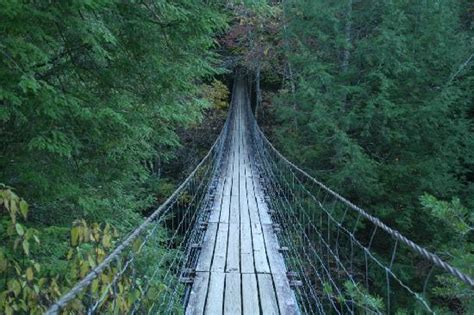 swinging bridge tennessee fall creek falls state park swinging bridge picture of