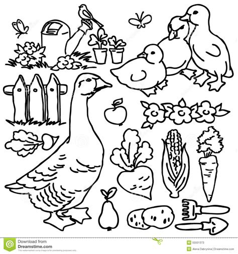 garden creatures coloring pages coloring book cartoon farm goose and animals stock