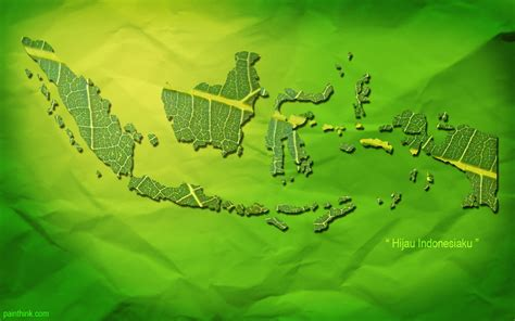 wallpaper daun background indonesia wallpaper