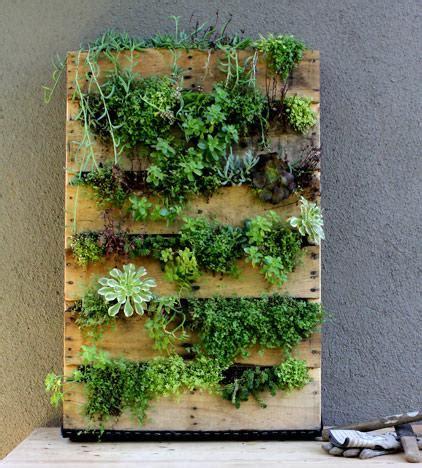 giardino in verticale 13 vantaggi coltivare giardini verticali ambiente bio