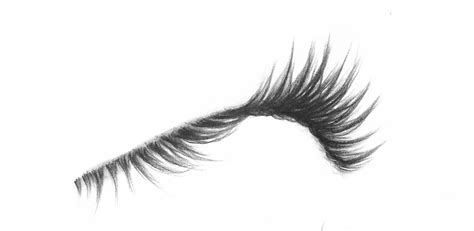 Drawing Eyelashes by Eyelash Drawing Pictures To Pin On Pinsdaddy