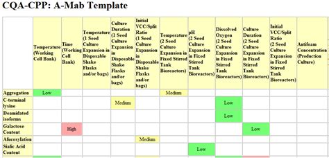 pharmaceutical risk assessment template qbd risk assessment without many meetings recipe part 1