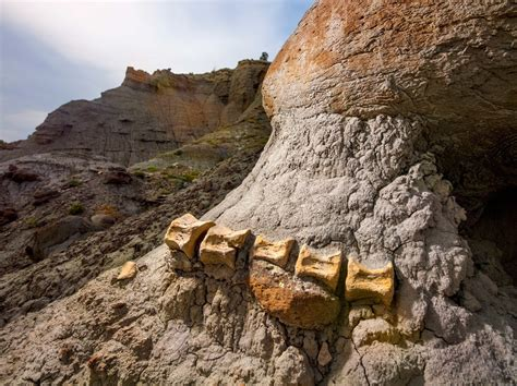 Find In Utah Utah S Grand Staircase Leads Back In Time To Dinosaur Shangri La The New