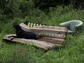 couch surfing wiki wikivoyage