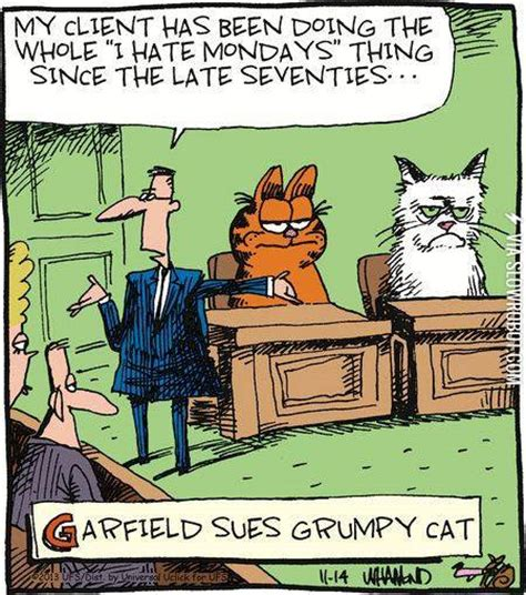 grumpy cat garfield books garfield sues grumpy cat