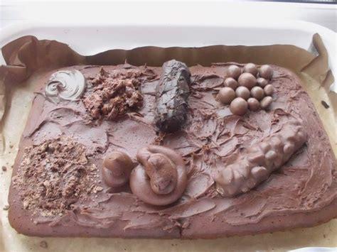 Bristol Stool Chart Cake by Bristol Stool Chart Cake Nursing Humor And