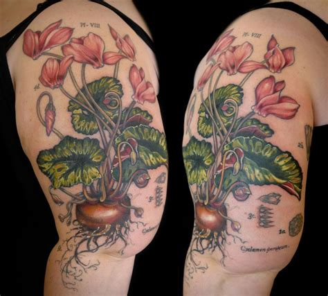 cyclimen botanical illustration tattoo by aubrey mennella