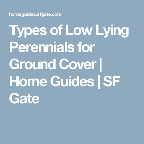 17 best ideas about ground covering on pinterest perennial ground cover ground cover plants