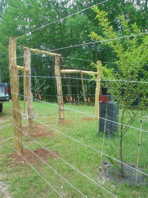 Deer Fence Door - 25 best ideas about vegetable garden fences on