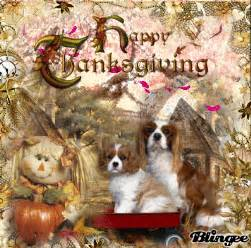 dogs at thanksgiving thanksgiving dogs picture 118629769 blingee com
