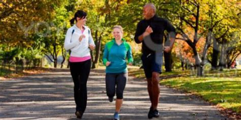Fisiologi Kerja Dan Olah Raga Foto Fungsi Tubuh Manusia Pada Kerja olahraga membuat orang lebih cerdas merdeka