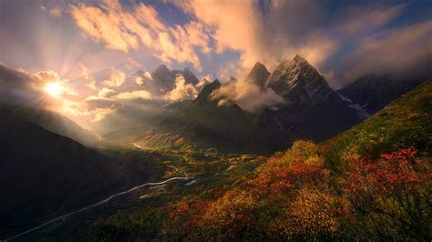 nature landscape fall shrubs mountain himalayas