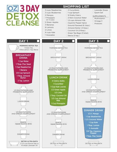 Best Detox Cleanse For Health by Dr Oz S 3 Day Detox Cleanse J4me