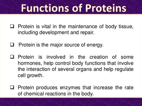 5 protein functions protein its functions
