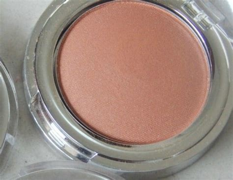Shoo All In the shop all in one blusher cookie cherryade and