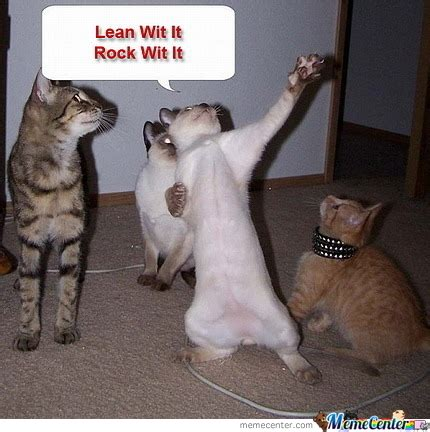 Dancing Cat Meme - dancing cat can dance by omg meme center