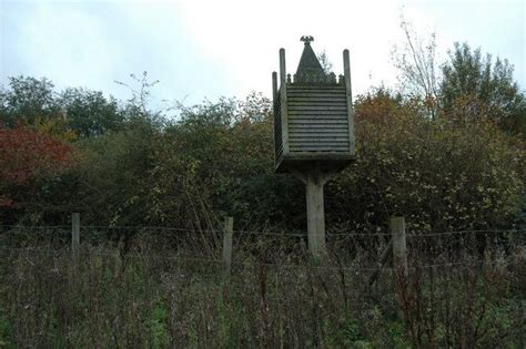 bat house 1000 images about outdoor living on pinterest water