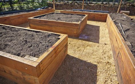 Raised Bed Gardening Guide   Planet Natural