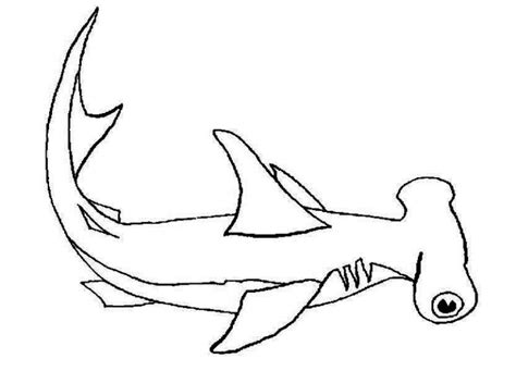 coloring page of a hammerhead shark impressive printable shark coloring pages for kids with