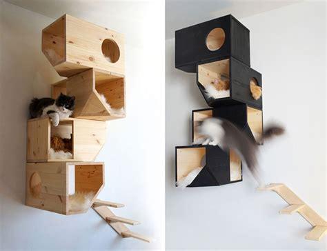 25 amazing cat furnishings tips decorazilla design