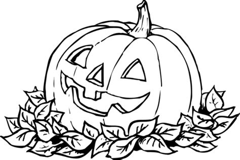 printable coloring pages pumpkin patch pumpkin patch coloring page clipart panda free clipart