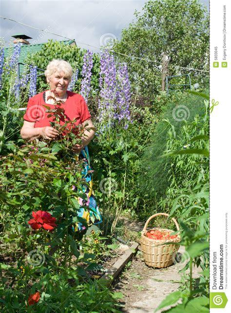 Grandmas Garden by Portrait Of In The Garden Royalty Free Stock Photo