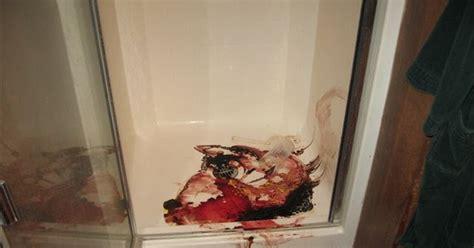 travis alexander photos leaked scenic photos travis alexander crime scene photos