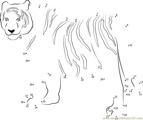Printable Tiger Dot To Dot | siberian tiger dot to dot printable worksheet connect