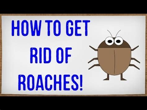 how to get rid of cockroaches in house how to get rid of roaches fast getting rid of cockroaches in your house without an