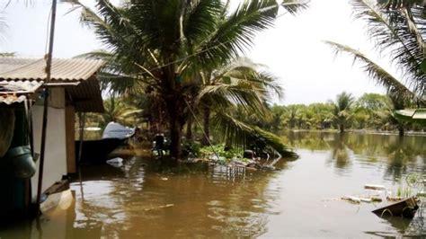Pakan Udang Sungai sungai bogowonto meluap ratusan tambak udang vaname di