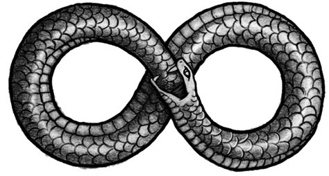 ouroboros png transparent images png all