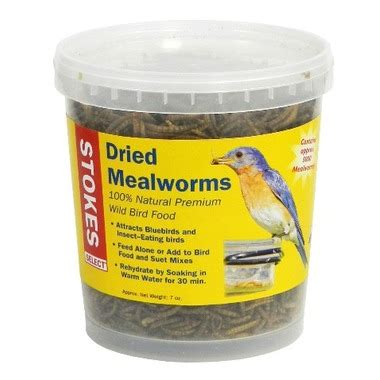 buy stokes select dried mealworms at well ca free