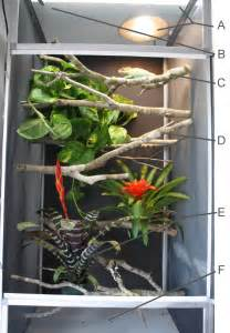 Reptile Uvb Light Panther Chameleon Cage