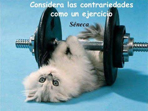 imagenes motivadoras de ejercicio frases motivadoras