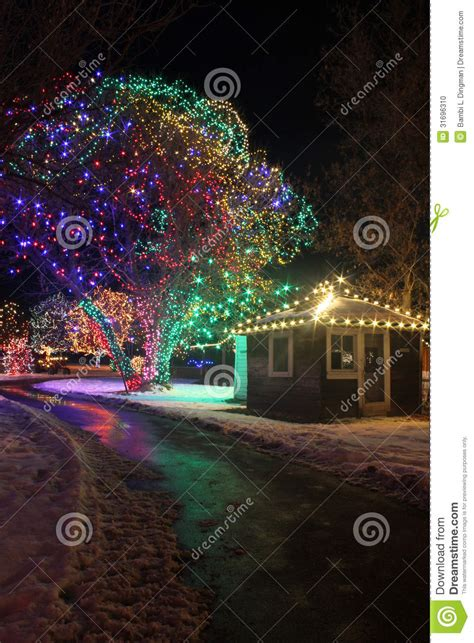 chatfield botanic gardens christmas lights lights stock photo image 31696310
