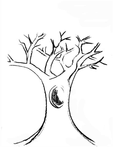Free Coloring Pages Of A Tree Trunk Tree Trunk Coloring Page