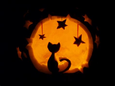 jack o lantern templates cat 13 killer halloween cat pumpkins mousebreath magazine