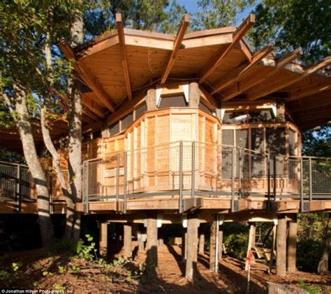 Treehouse Camping Georgia - the world s most extraordinary tree houses revealed ghananation com
