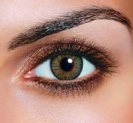 hazel eye color the best color eyeshadow for your eye color