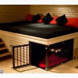 awesome loft bed area with a built in kennel