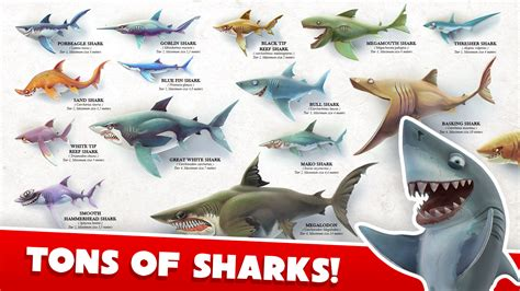download game hungry shark mod money hungry shark world mod money gudang game android apptoko