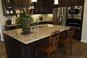 Top 25 Best Apartment Patio pictures of kitchens traditional dark espresso kitchen