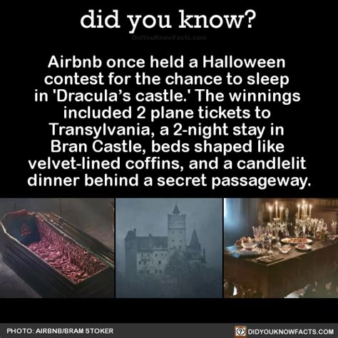 airbnb contest airbnb once held a halloween contest for the did you know