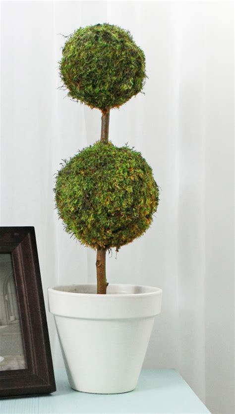 make a topiary diy moss homes