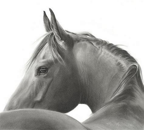 imagenes hechas a lapiz de animales cuadros modernos pinturas y dibujos caballos dibujos