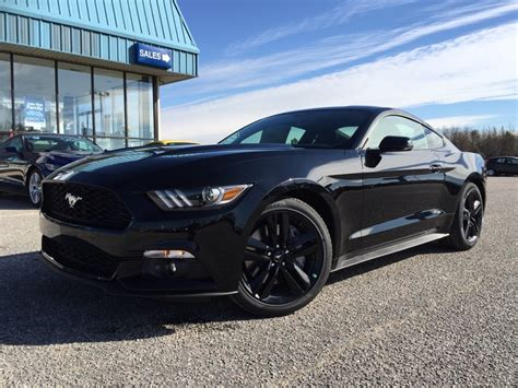 black mustang 2015 ford mustang ecoboost black wallpaper