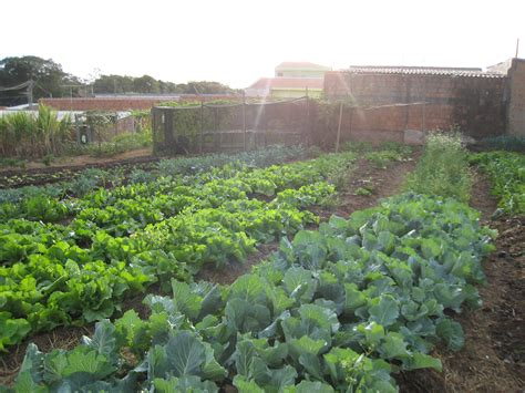 Garden Communities by File Community Garden Jpg