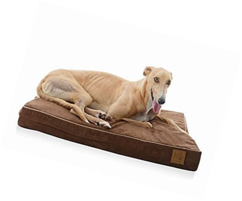 extra large pet beds pet beds for extra large dogs cat orthopedic plush memory