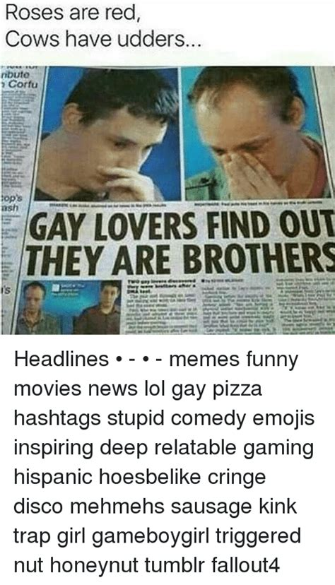 Where To Find Funny Memes - roses are red cows have udders ributo corfu ops ash gay